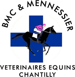 veterinaire-chantilly